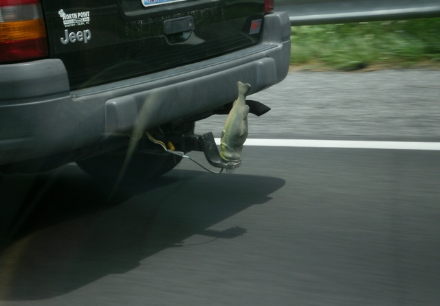 Leaving your trailer hitch in for protection page 6 for Fish hitch cover