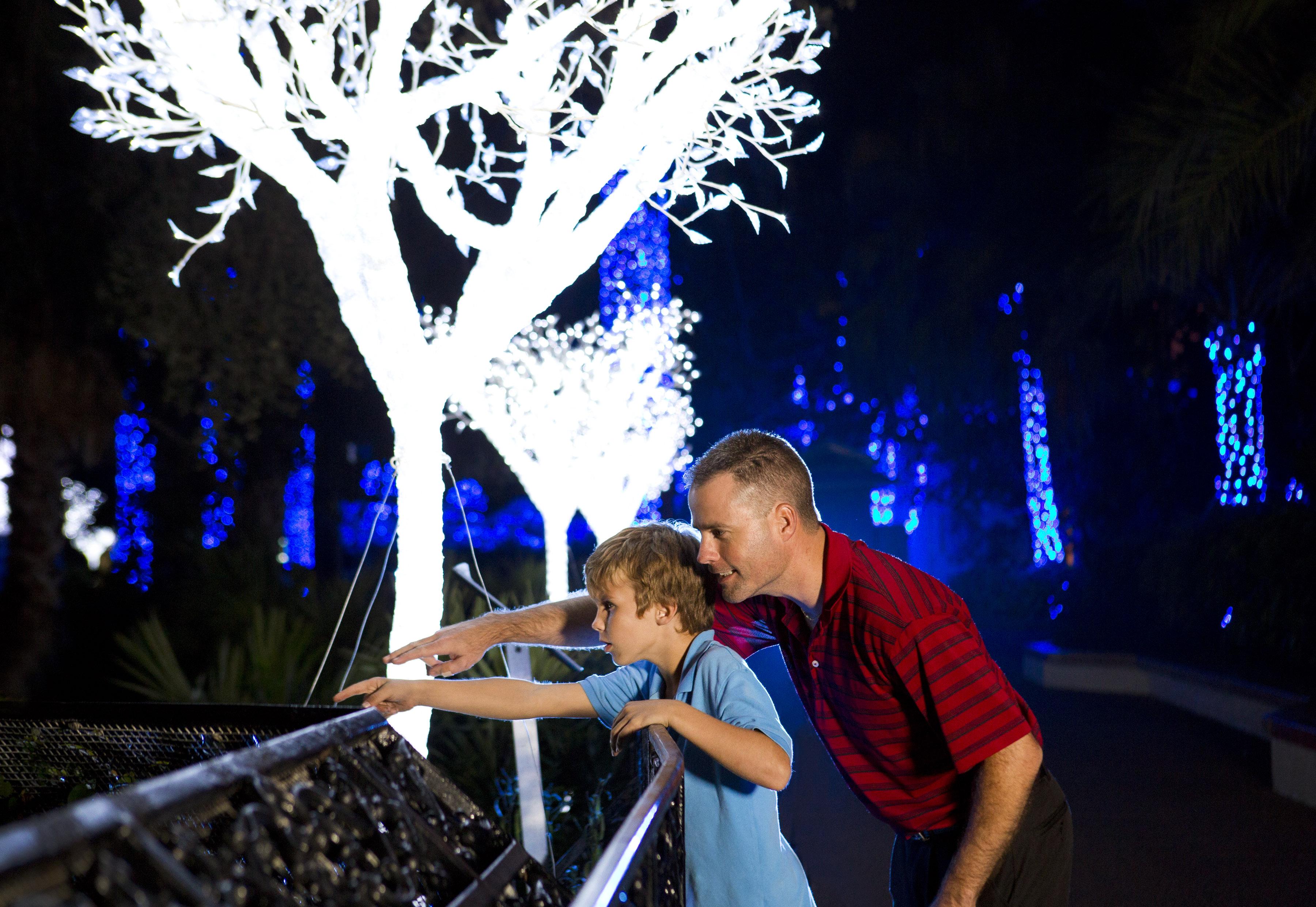 Theme Park Review Busch Gardens Tampa Bay Bgt Bga Discussion Thread Page 398