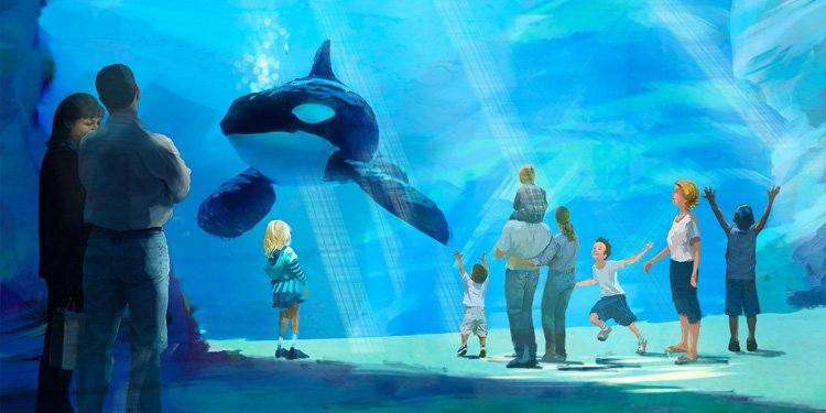 SeaWorld Announces New Shamu Exhbit