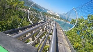 Dragon's Tail POV Video!