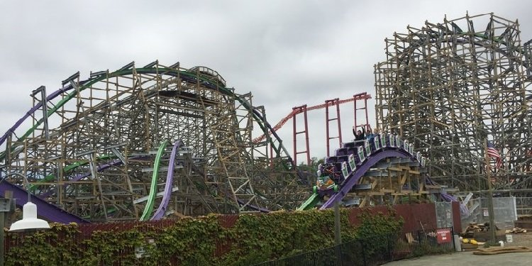 Joker Media Day at SF Discovery Kingdom!