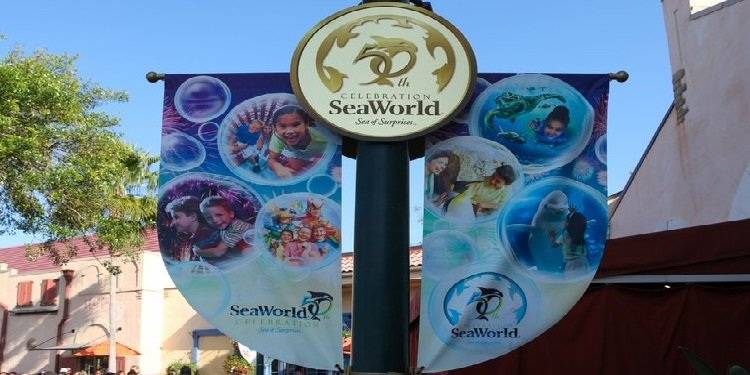 Happy 50th Anniversary SeaWorld!