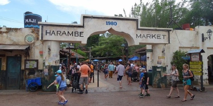 Harambe Market at Disney's Animal Kingdom!