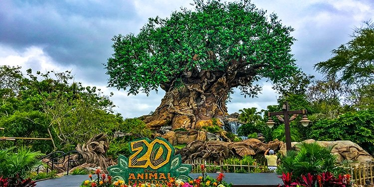 Disney's Animal Kingdom's 20th Anniversary Celebration!