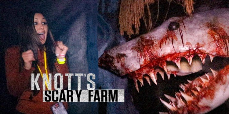 Take a Video Tour of Knott's Scary Farm!